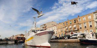 Bateau dans le port de Sète-tourisme ©Martin BOHN